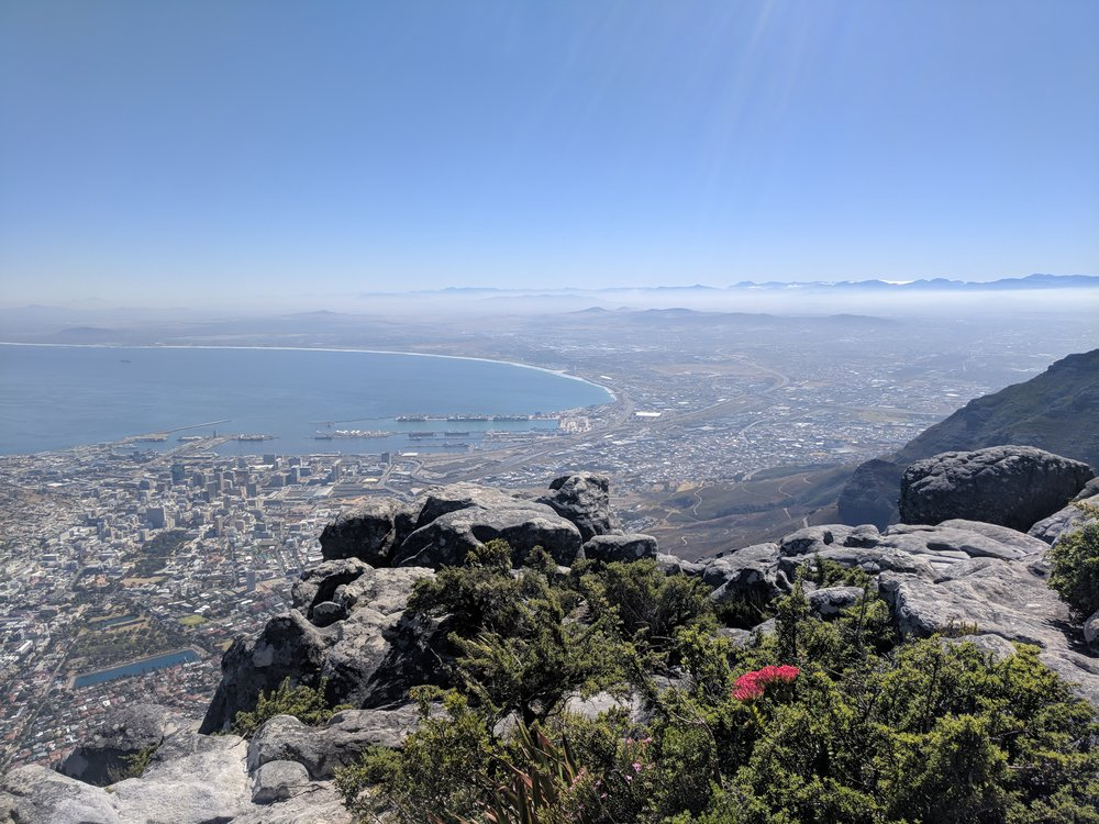 Cape Town from above.jpg