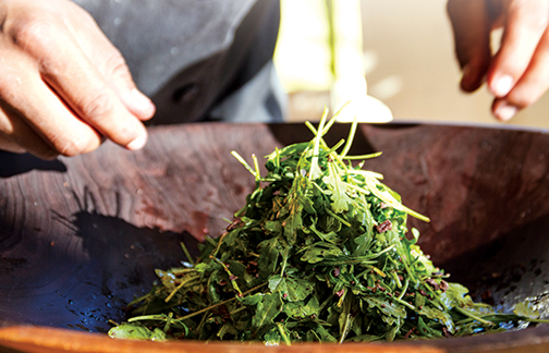 Arugula Salad © 2013 Guri Bigham