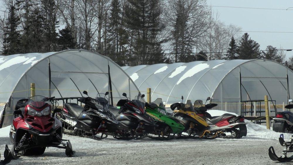 Snowmobiles.jpg