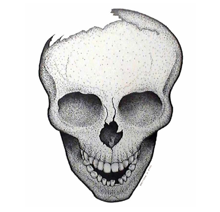 skull_stipple-ink_MattHunterRoss.jpg