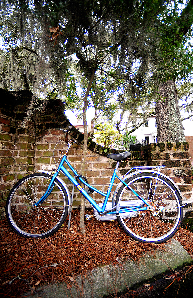 Savannah Bike website.jpg
