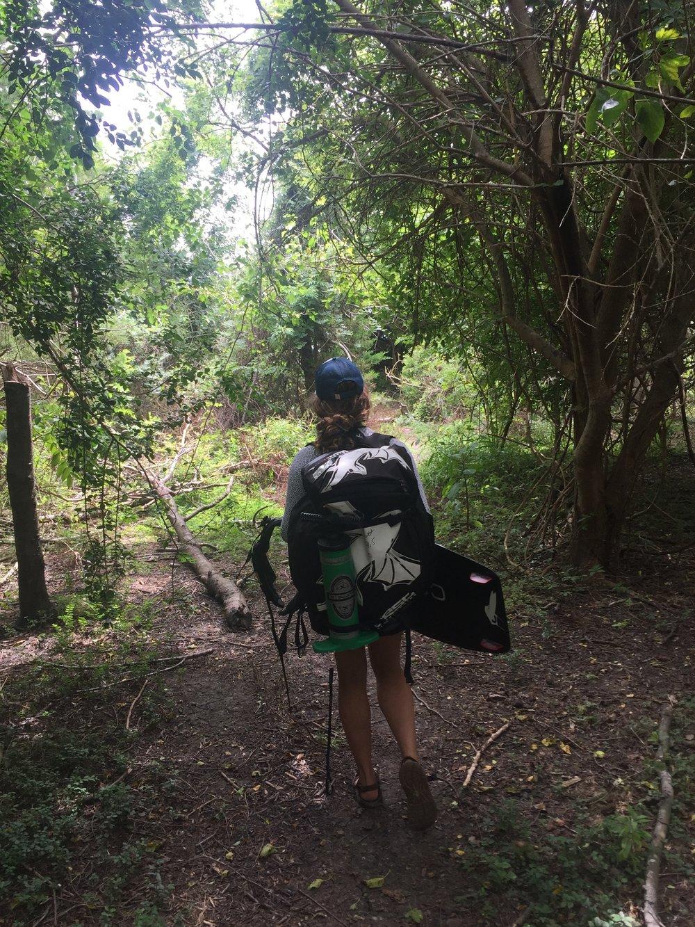 The walk through secret horse trails!