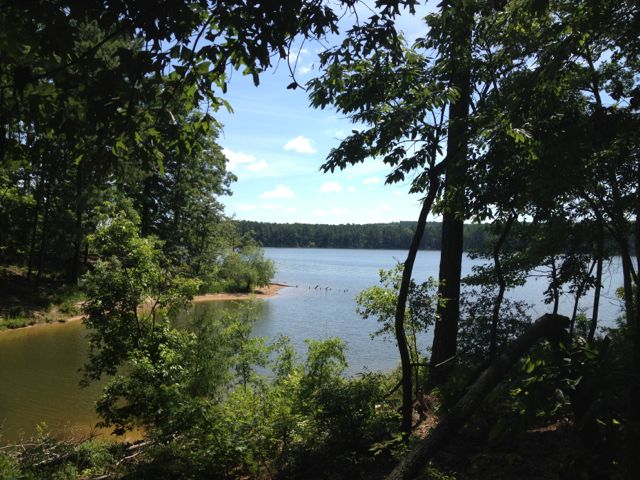 Jordan Lake is a great place to cool off from the summer heat.