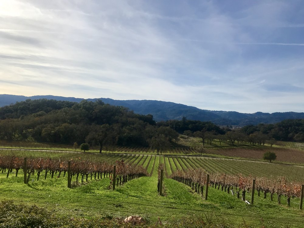 Wine country views....