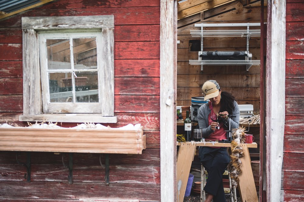 Going straight to the source, Hilary Hutcheson twists a few feathers inside the old chicken coop. Columbia Falls, Montana. Photo credit to Lee Cohen.