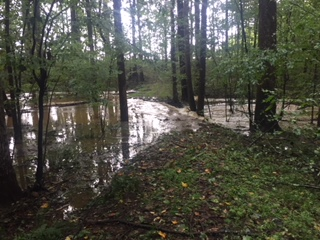 Cane Creek Florence flooding.JPG