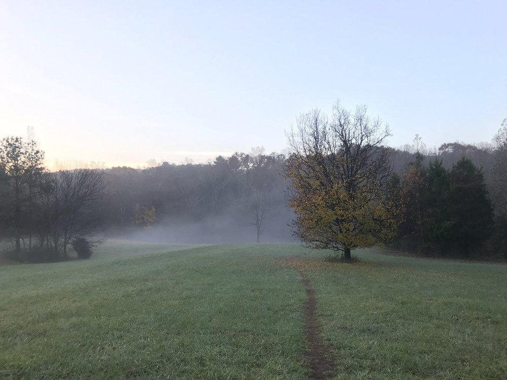 Misty mornings in Merritt's Pasture. Photos thanks to Matt Chenet