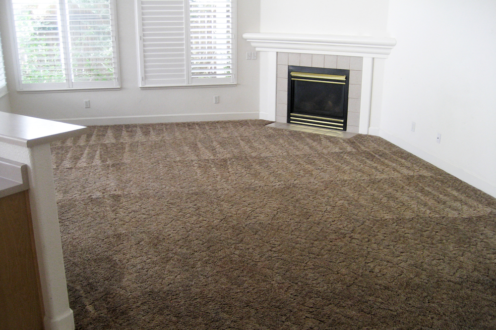 There are three main elements to maintaining your carpet: vacuuming, prompt spot removal, and regular professional cleaning.  Even if it does not look dirty, your carpet needs to be vacuumed. Very small sand, clay, and quartz particles are constantly tracked in by people and animals. These particles settle to the bottom of the carpet where they rub against the fibers almost like sandpaper. Regular vacuuming will remove these particles and lengthen the life of your carpet. Regular Professional steam cleaning/hot water extractions will remove the dirt and dust, hair, dander & pollutants that your vacuum can't reach or suck up.