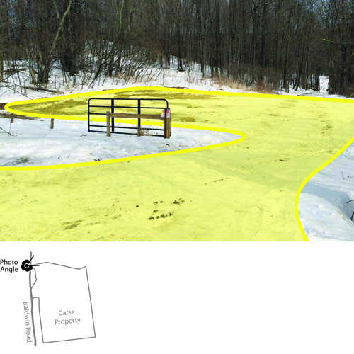 Carse Natural Area Parking Study