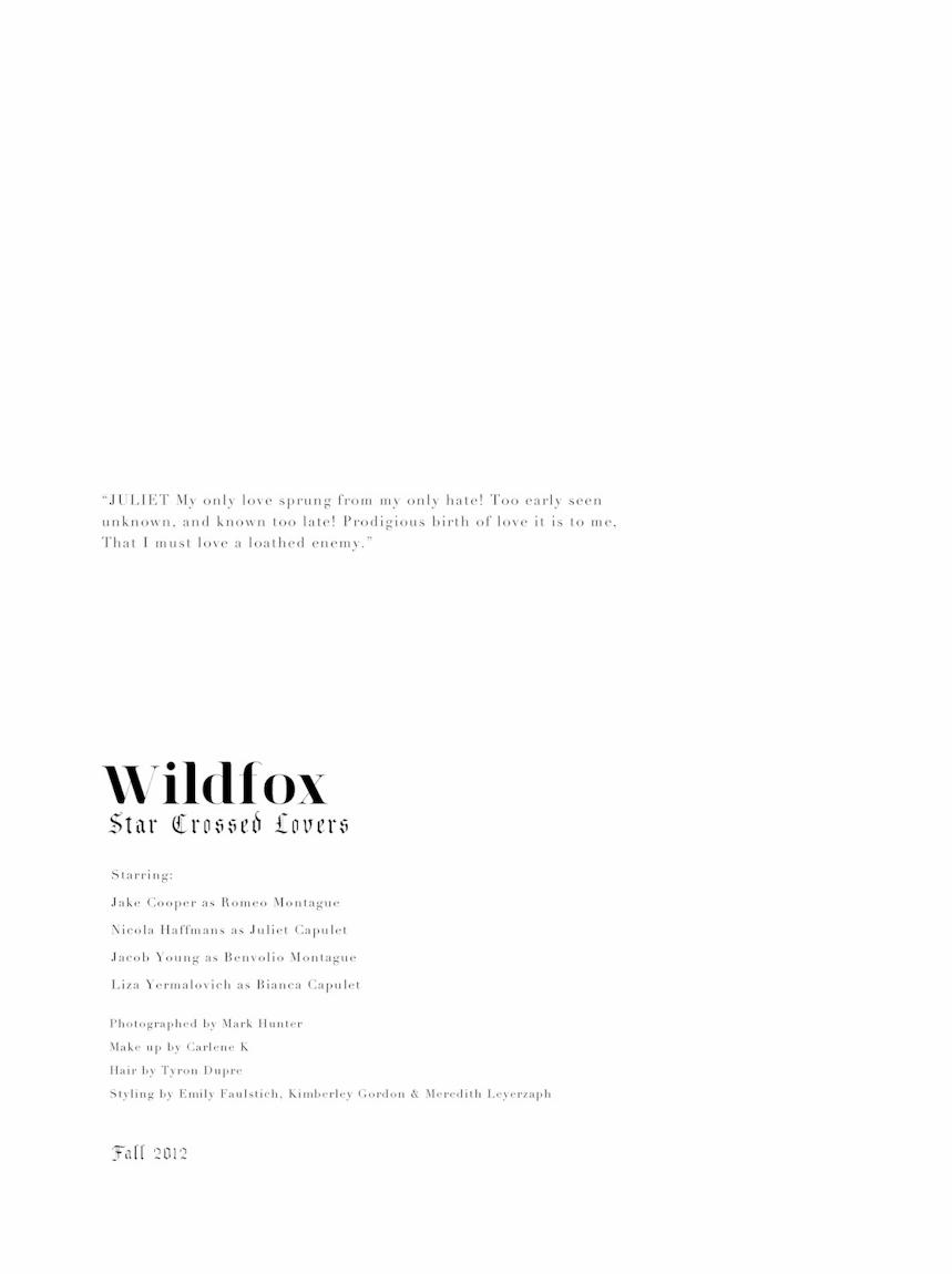 wildfox romeo juliet