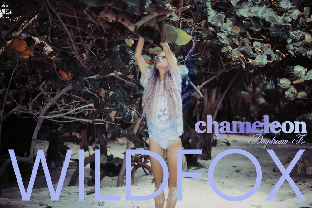 CHAMELEON WILDFOX-9.jpg