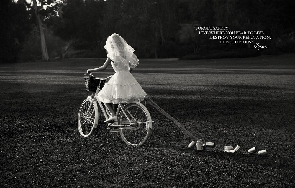 SUMMER_ROYAL_ROMANCE_FOX_BOOK-46.jpg