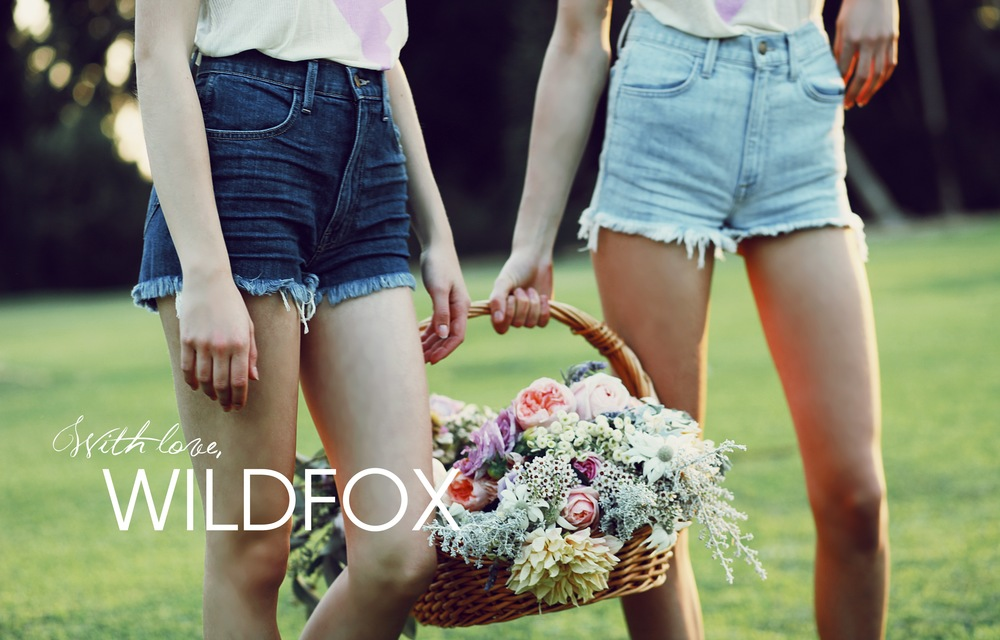 SUMMER_ROYAL_ROMANCE_FOX_BOOK-52.jpg