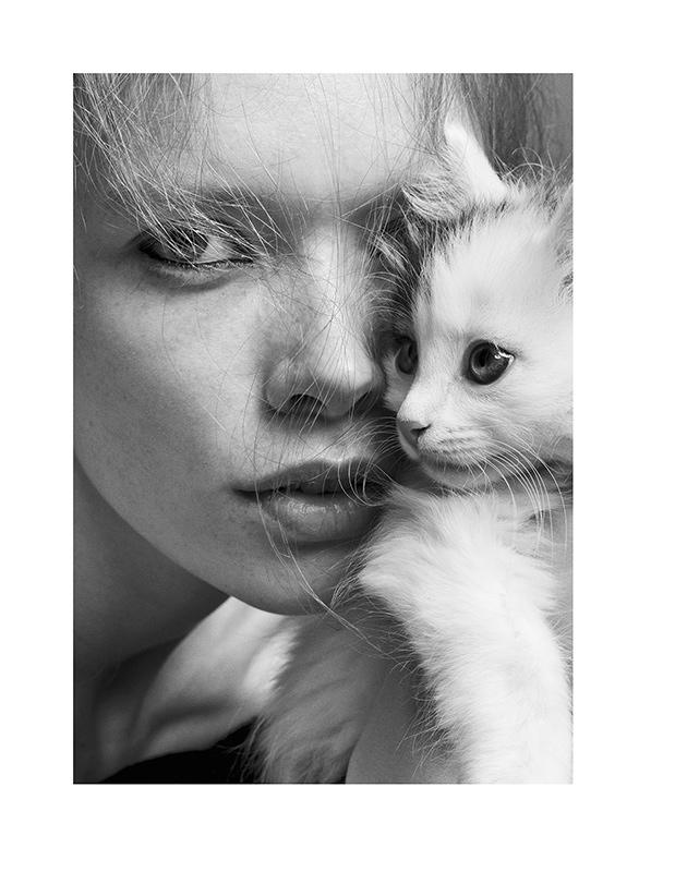 julia-hafstrom-cat6.jpg