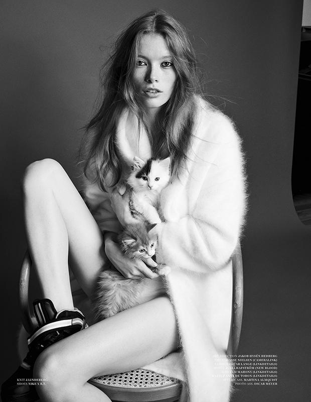 julia-hafstrom-cat8.jpg