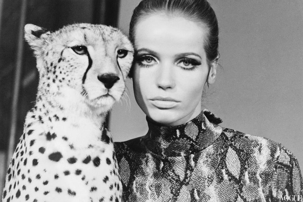 veruschka_with_leopard-_william-klein.jpg