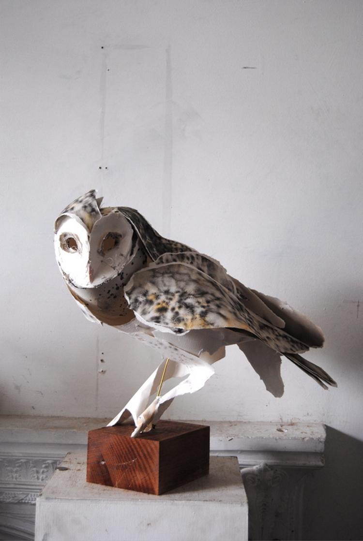 mr_Owl_Perched_idx37763479.jpg