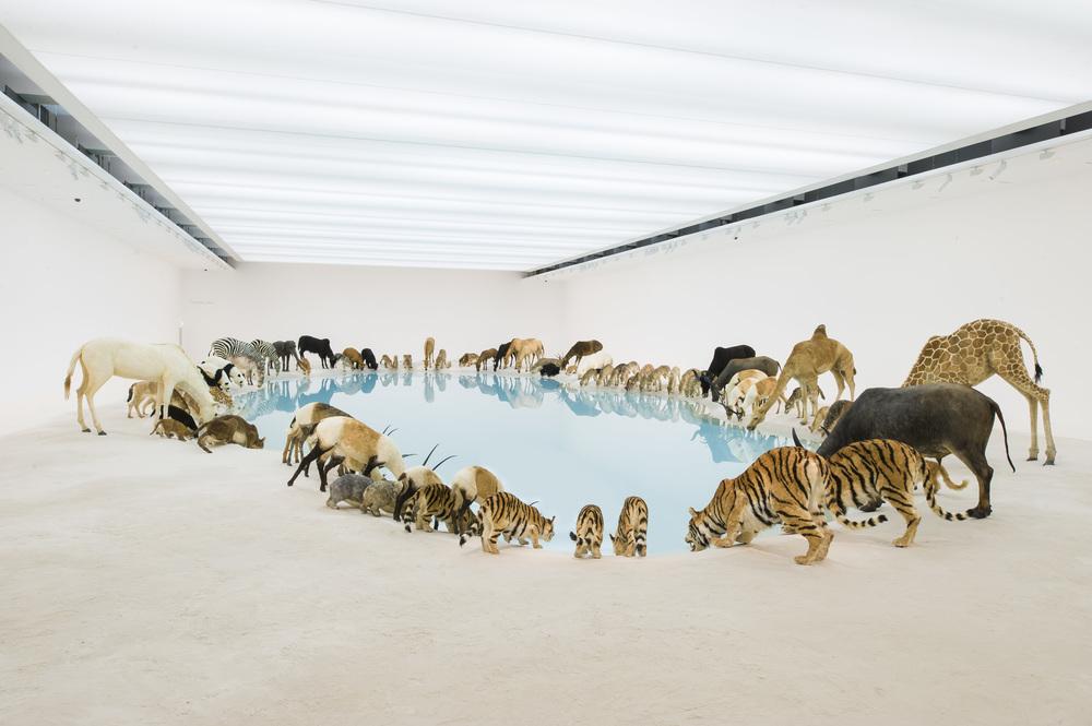 Cai-Guo-Qiang-Heritage-Wateringhole-99-life-sized-replicas-of-various-animals-water-sand-2013-Brisbane-Gallery-of-Modern-Art-1.jpg
