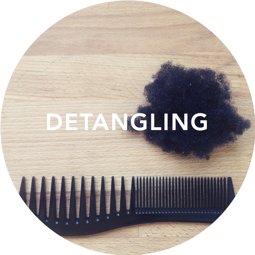 detangling_title.png