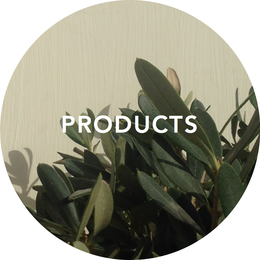 PRODUCTS_title.png