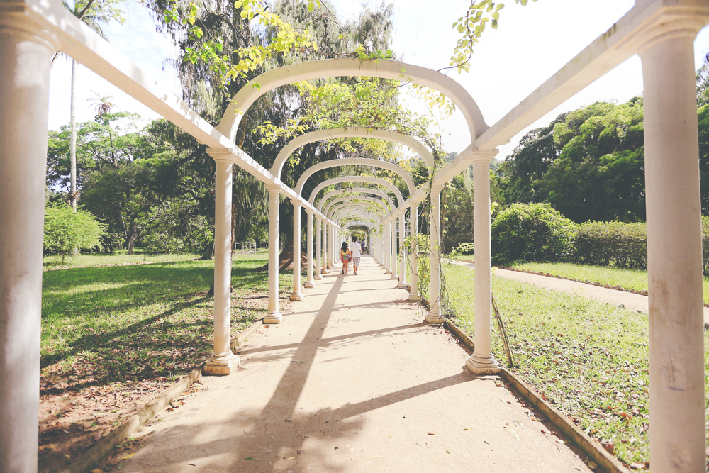 Exploring theBotanical Gardens - Jardim Botanico