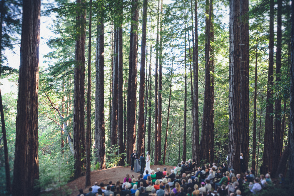 sol-gutierrez-california-redwood-forest-retreat-wedding_1264.jpg