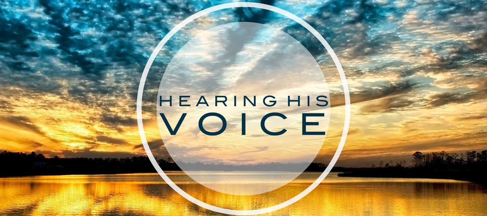 hearing his voice Voice hearers may think they are alone in hearing voices this can lead to feelings of shame or the fear of going mad anxiety often leads to the avoidance of situations that might trigger the voices, stopping people leading a full and rewarding life.