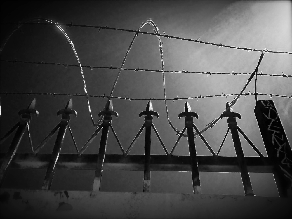 barbed wire close.JPG