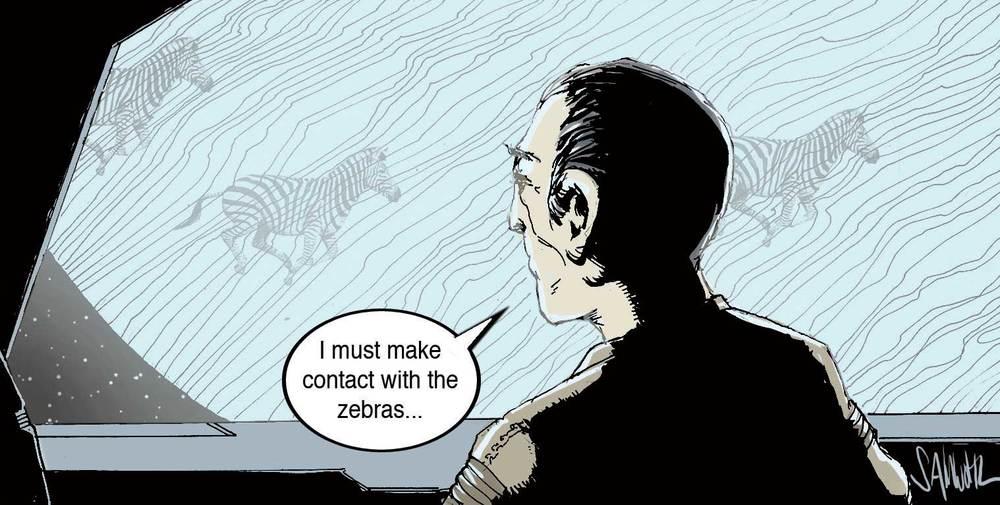 man_zebras_web.jpg