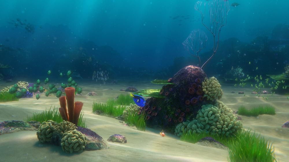 reef10.jpg