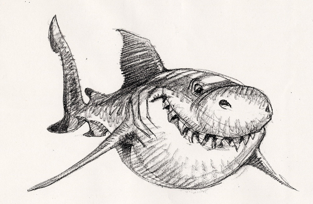 Sharks3a.jpg