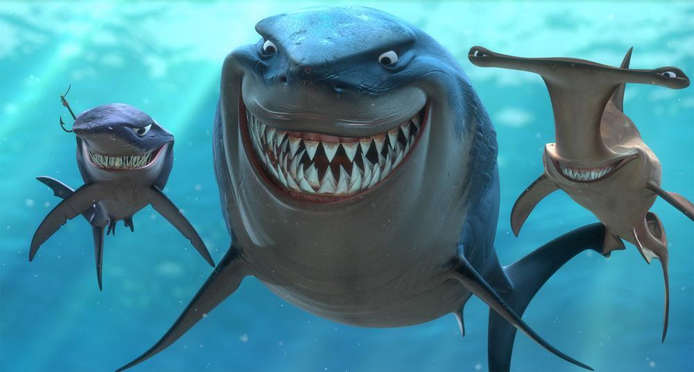 Sharks8.jpg