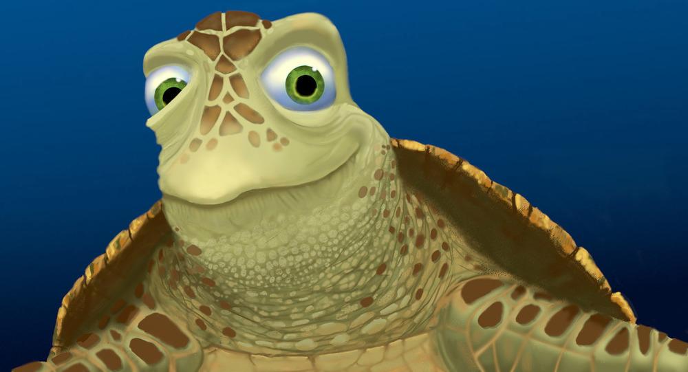 Turtles6.jpg