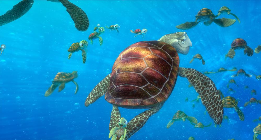 Turtles8.jpg