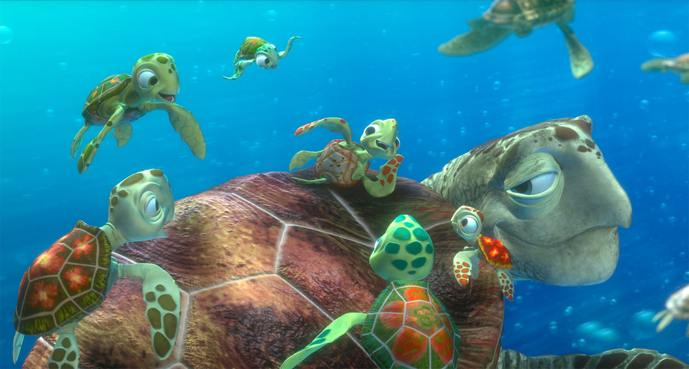 Turtles11.jpg