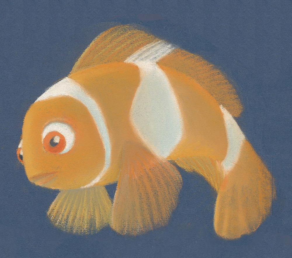 Coral3.jpg