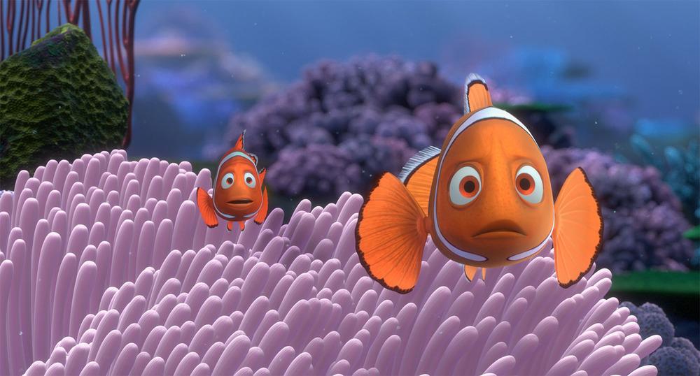 Coral5.jpg
