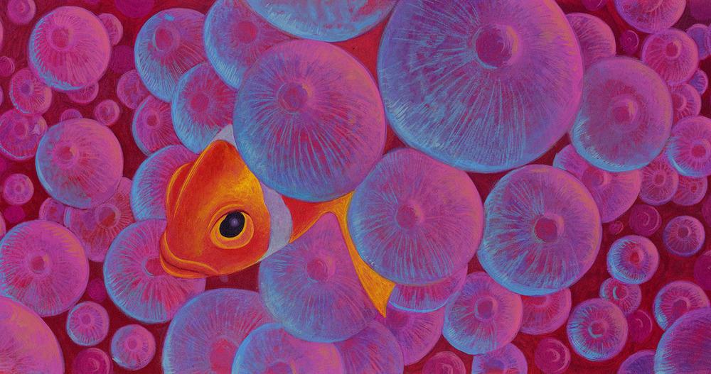 Reef7.jpg