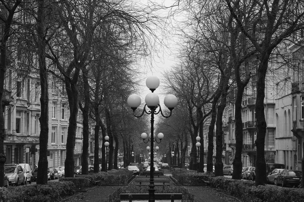 Belgian Lamps