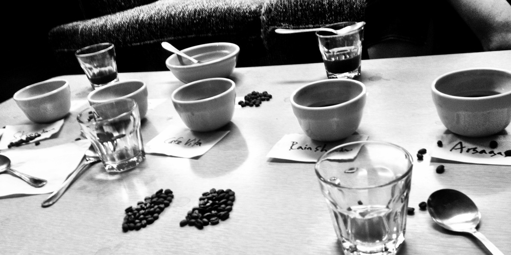 ethiopian cupping.jpg