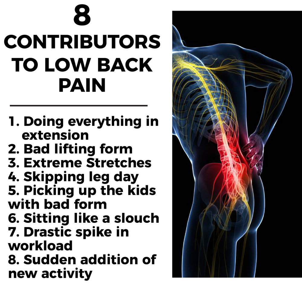 TODAY\'S EDGE: 8 CONTRIBUTORS TO LOW BACK PAIN — TD Athletes Edge