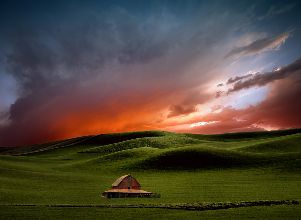 Lisa Wood,   Art of Farmland: Palouse No4