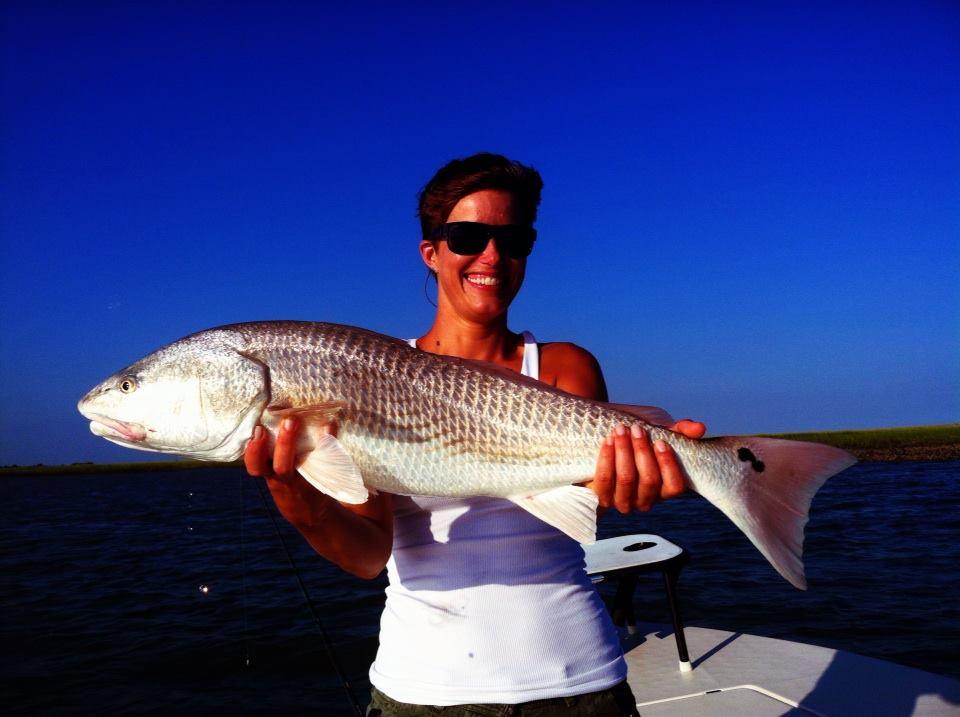 Charleston Summer Redfish