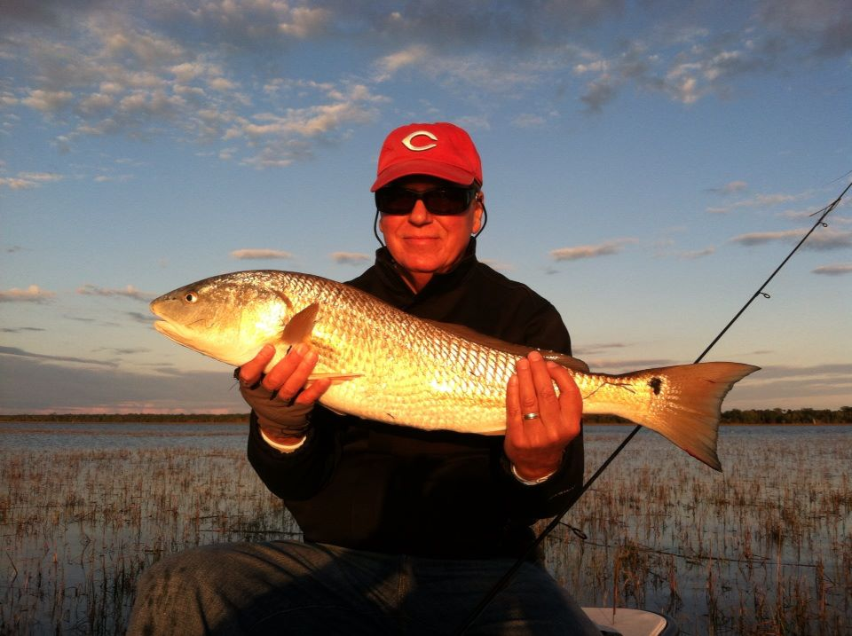 Charleston Tailing Redfish