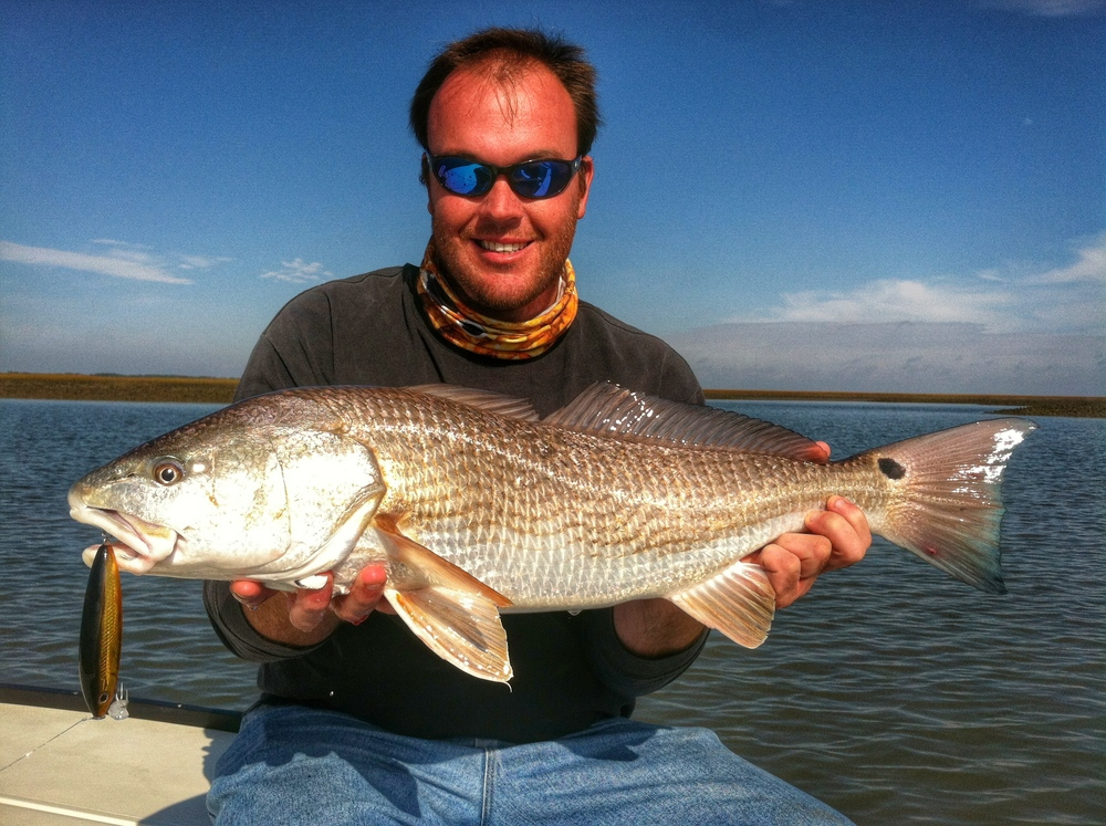 Charleston Redfish Topwater