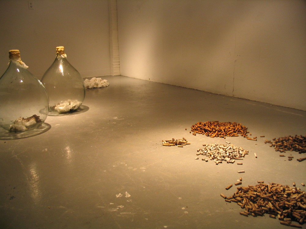 Smoking Relics , 2006 Cigarette butts, glass carboys, facial tissue, resin exhale  La Petite Mort Gallery , Ottawa, Canada Adviser: Carla Whiteside  An every day activity, such as smoking, transforms into religious-like, meaningful procession - no matter how banal it may seem. The objects presented in  Smoking Relics  become signifiers and markers of time; whether expressed through the daily accumulation of cigarette butts, or the growing collection of exhale smoke on tissue, or even the bottled mass of cigarette smoke.  The materials and objects saved are transient in nature and considered end-products of an action or a process. Cigarette butts, considered dirty and disposable, hold a reminding truth of the previously enjoyed action. Time becomes acute when trying to quit, counting the days since the previous time of the preformed smoking ritual. When the refuse is seen in quantity, calculation of assumed time is present in a shameful tone. The yellowed exhales on tissue function similarly, pointing to the transformation that occurs inside the body and highlighting life's impermanence.