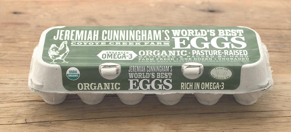 Jeremiah Cunningham's EggsSolo.jpg
