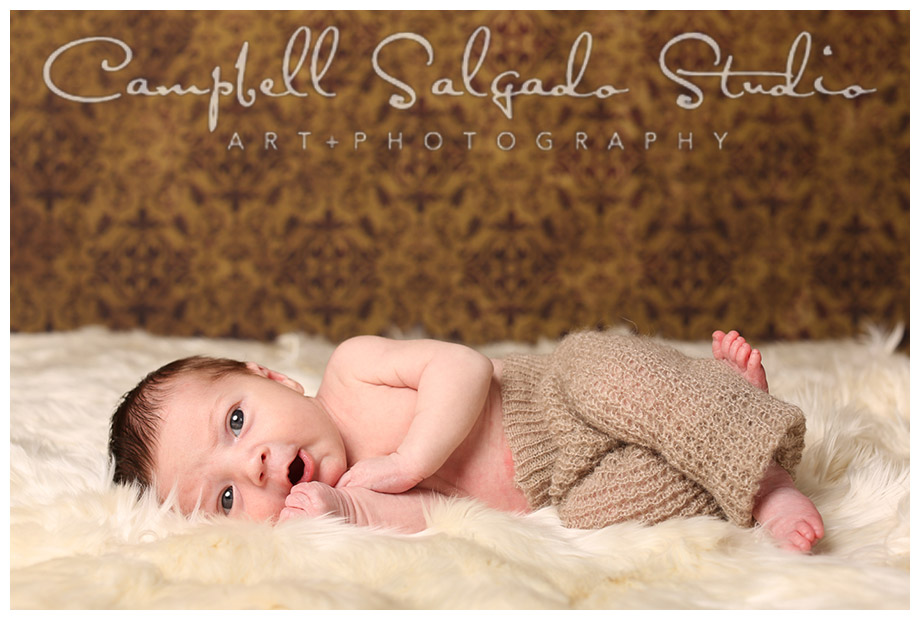 Portrait of infant on alpaca wool at Campbell Salgado Studio.