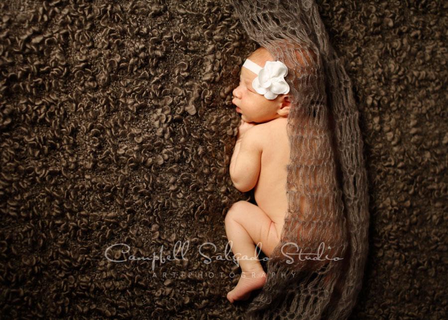 Portrait of newborn on blankies background by newborn photographers at Campbell Salgado Studio in Portland, Oregon.