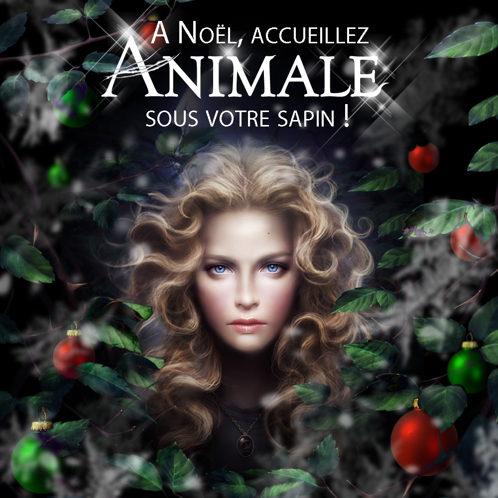 Animale de Victor Dixen - Noël.png